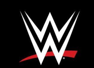 WWE Future Endeavors Writer